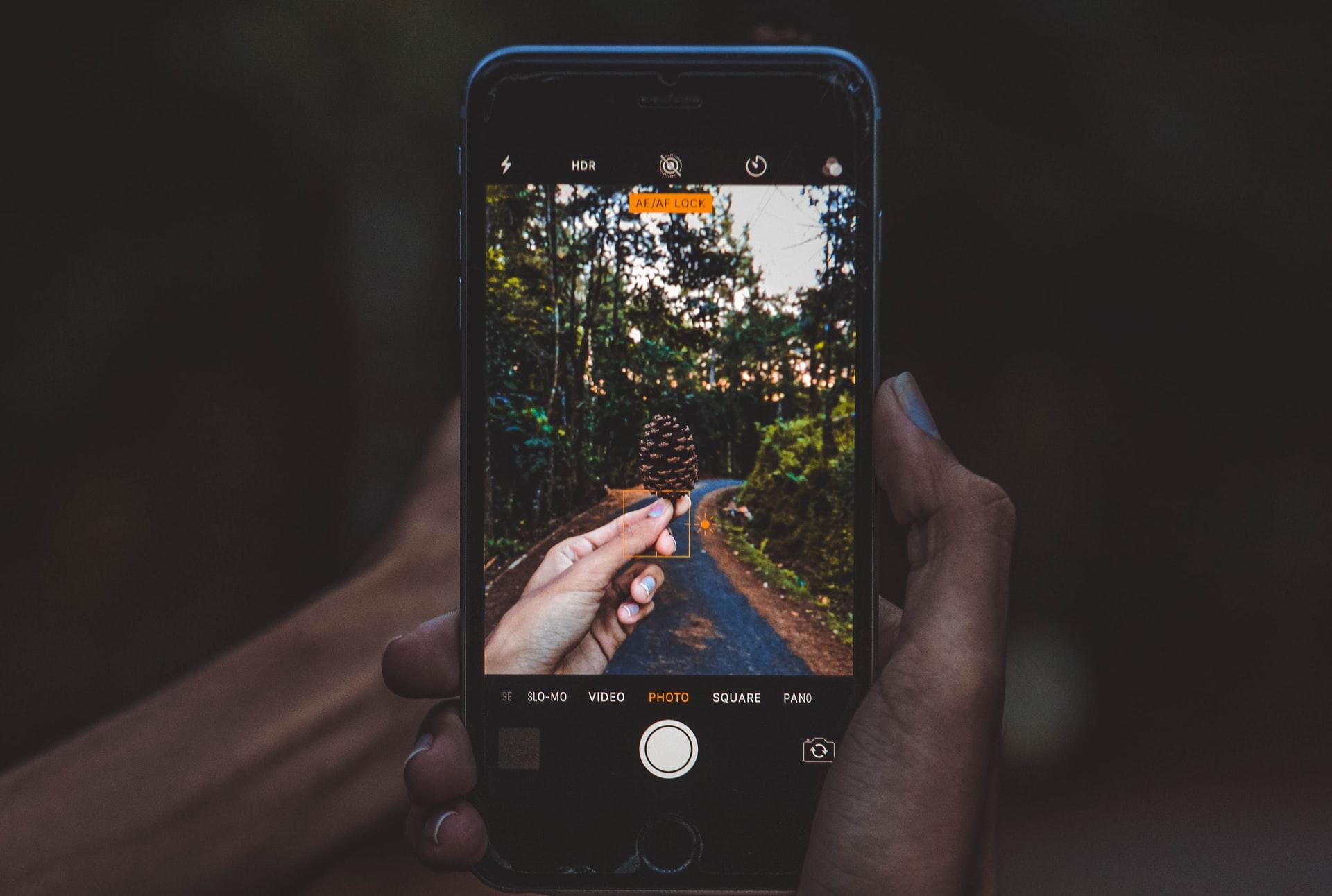bancos de imagens gratuitos para usar nas redes sociais